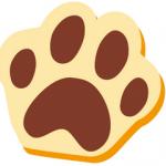 深爪に注意!犬と猫の爪切り 深爪させてしまった時の対処法
