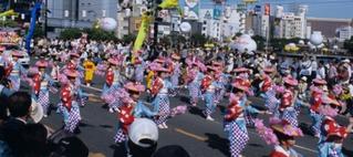 dontaku
