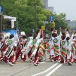 ひろしまフラワーフェスティバル2016 交通規制・イベント情報