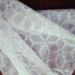 レースカーテンのカビ取り 色々な洗剤を使って取る方法